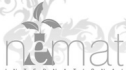 logo de Nemat International