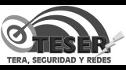 logo de Tera, Seguridad y Redes